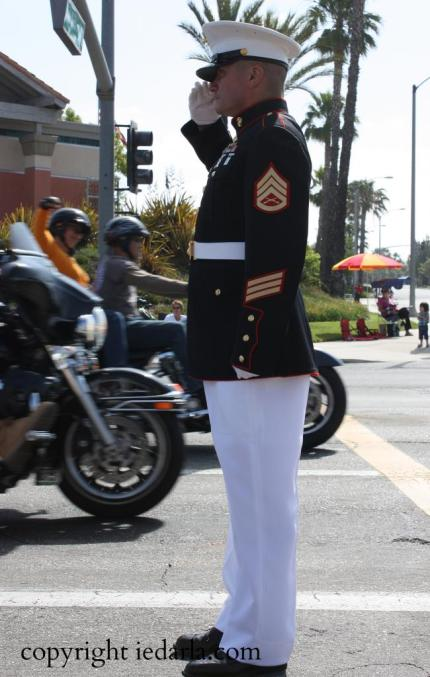 Sgt. Tim Chambers,  The Saluting Marine